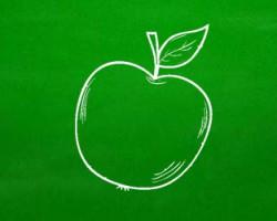 Prečo sova a jablko sú považované za symboly vzdelania?